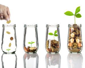 Winning Bidding Strategies - From The Tax Lien Lady